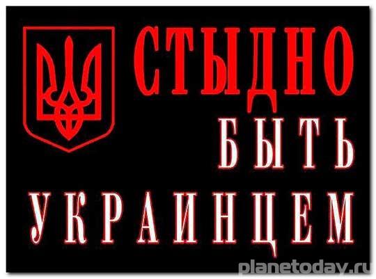 СБУ «положила» свыше тысячи харьковских сайтов