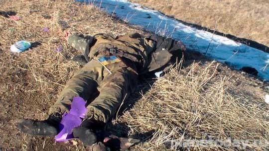 Матери украинских карателей пишут письма