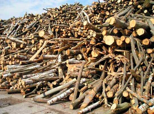 Украинцы будут обогреваться дровами