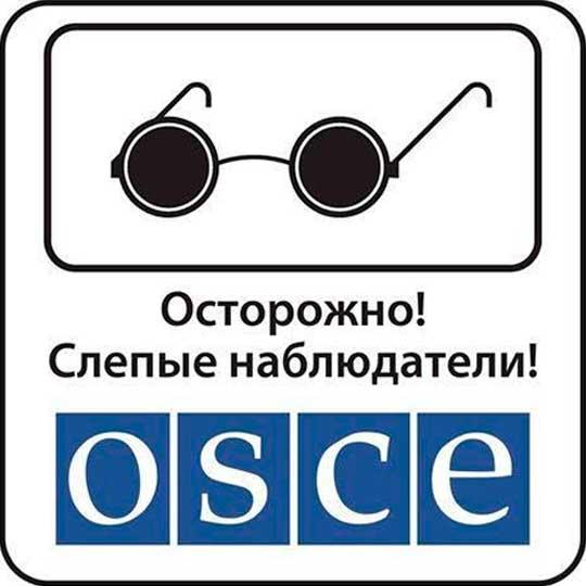 ОБСЕ отказалась подтвердить объявленный ополченцами отвод вооружений