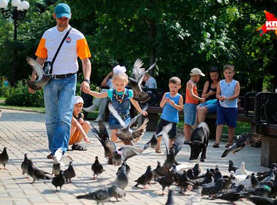 Прогулка по мирному Донецку