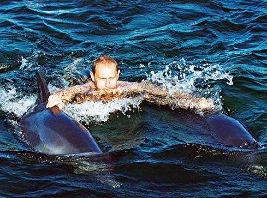 Западные СМИ: Путин выращивает дельфинов-киллеров